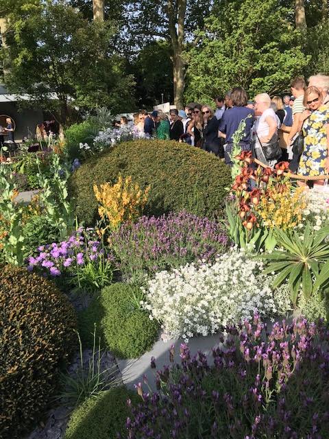 Chelsea Flower Show visitors