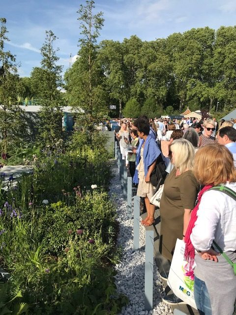 Crowd at the Chelsea Flower Show in London